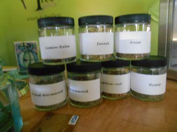Herbs used in making absinthe